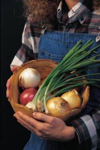 winter veggies